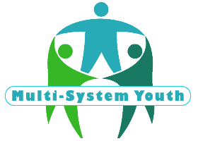 Multi-System Youth Program